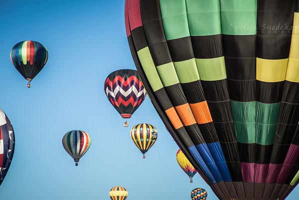 The Great Reno Balloon Race 2014