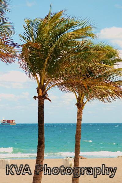 Florida Beaches