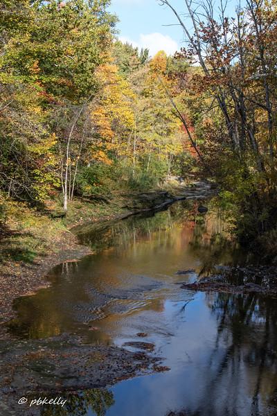 Black River 101320-3.jpg