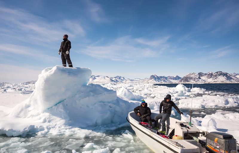 Inuit driver looking for passage through dense bergy bits, Ammassalik Fjord, East Greenland