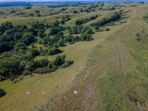 Broken Kettle Grasslands