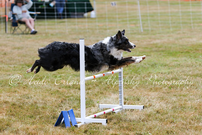 Jumpers Open R1 - 07/13/15