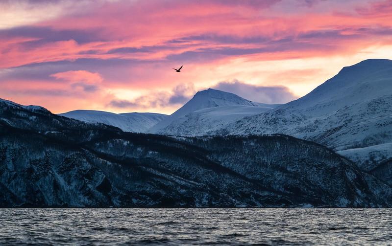 mountains Norway.jpg