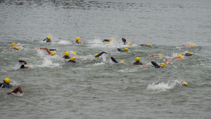 The first wave of swimmers