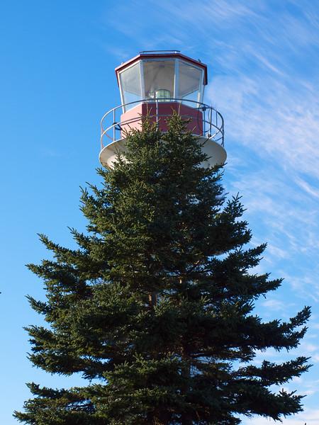 Mosher Island Light with Tree