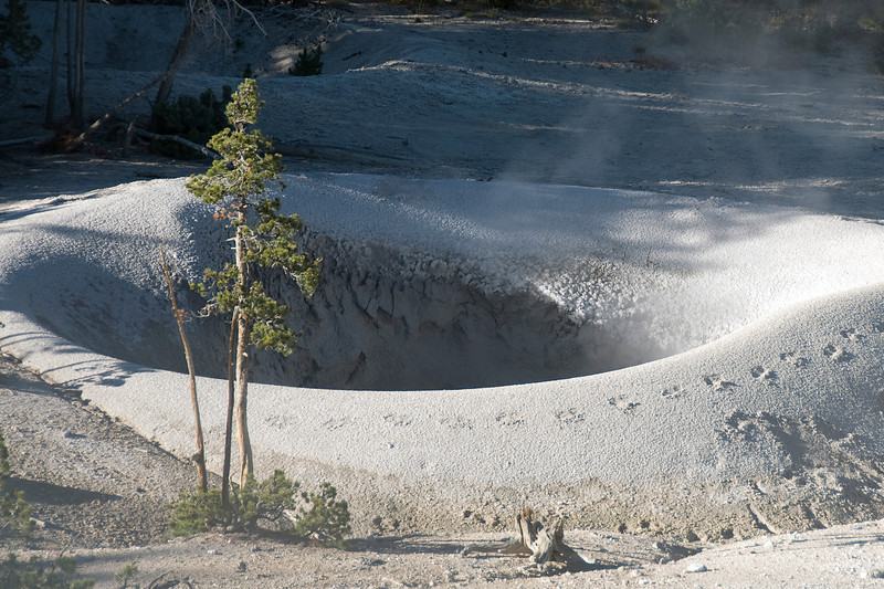 Old Faithful Geyser in Yellowstone National Park, Wyoming