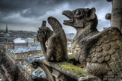 Thinking Gargoyle    Photography by Wayne Heim