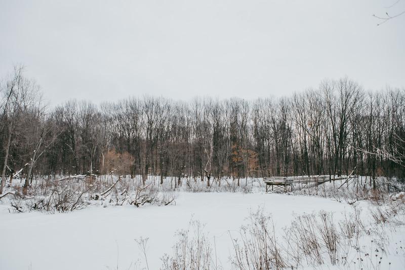 AVS_EcoPreserve_Winter2021-3.jpg