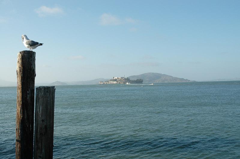 碼頭邊遠望the rock