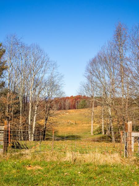 29 Nov 12 Fence cow pasture (1 of 1).jpg