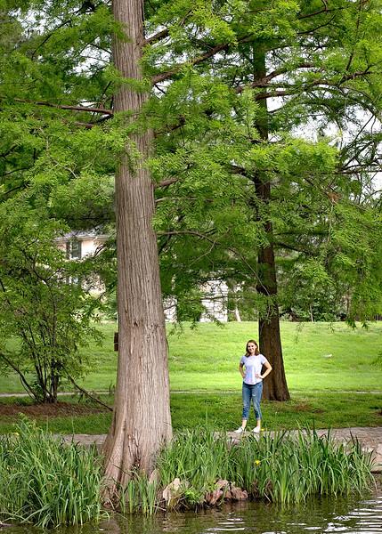 tall tree (1 of 1).jpg