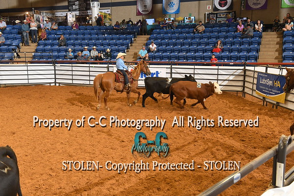 Youth Adult Gate RSNC Finals 2019