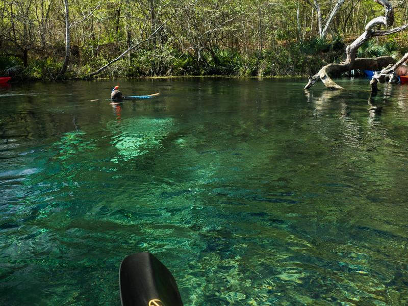 02-23-2019 Ichetucknee River kayak (54 of 78).jpg