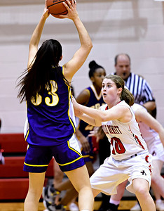 Jamesville-DeWitt 2013-14 Girls Basketball
