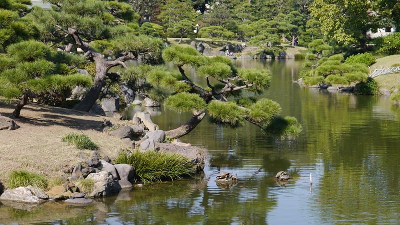 28-Japan2011_2535.JPG