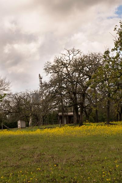 2016-03-12 Big Valley Ranch in Donie 013.jpg