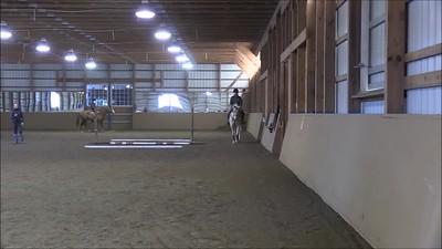 TSRC 2019-03-20 Milestone Sport Horses Video