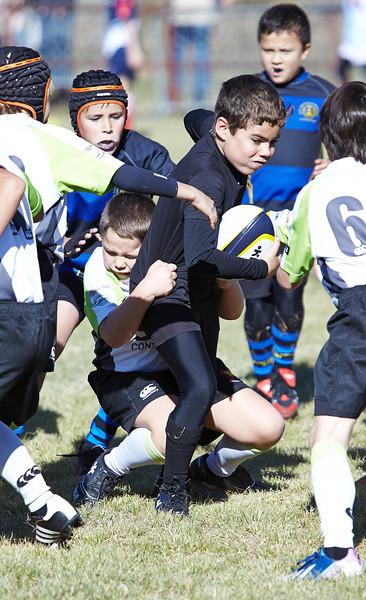 0989_09-Nov-13_RugbyOrcasitas.jpg