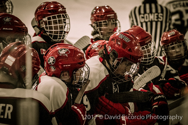 Red Wings Tourney Game 1 vs Vaughan