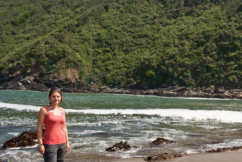 Valdivia 201201 Curinaco (30).jpg