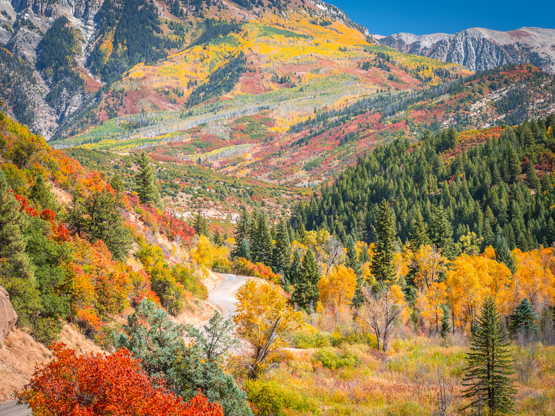 Kebler Pass Autumn Alcove:  Colorado Fall Colors Fine Art Landscape Nature Photography Fuji GFX100  Elliot McGucken Fine Art Landscape Nature Photography Prints & Wall Art