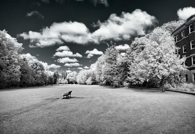 Central Park, Ottawa-1.jpg