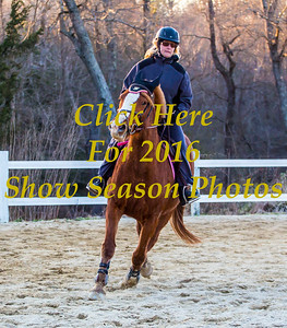 2016 Horse Competition. Some Photos In These Galleries Are Rough Edits. All Photos Are Individually Edited Before Being Printed Or Sold In Digital Form.