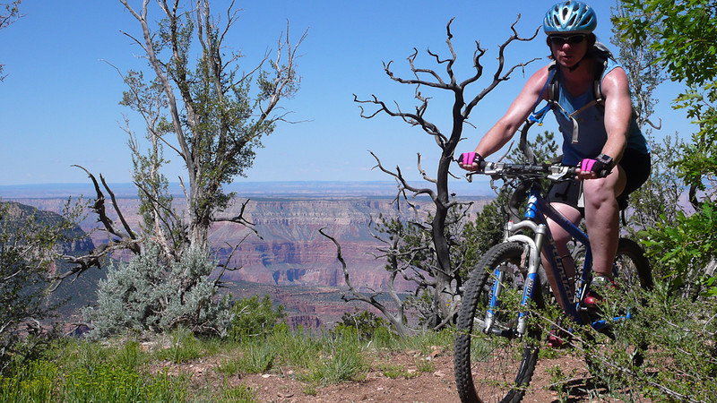 Ride or look at the view, not both.