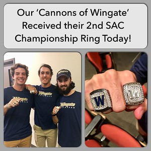 Cannons of Wingate