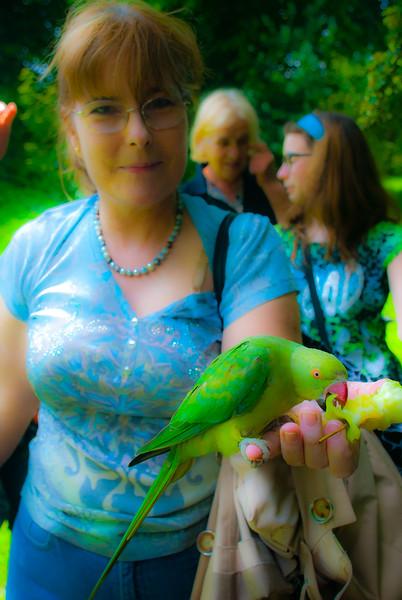 Hyde PArk Birds (25 of 25).jpg