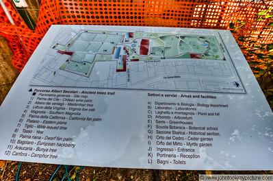 2011 10 26 Pisa Tower and Botanical Garden Area