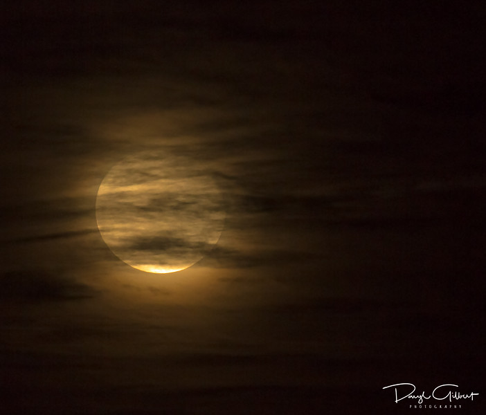 November's Beaver Moon