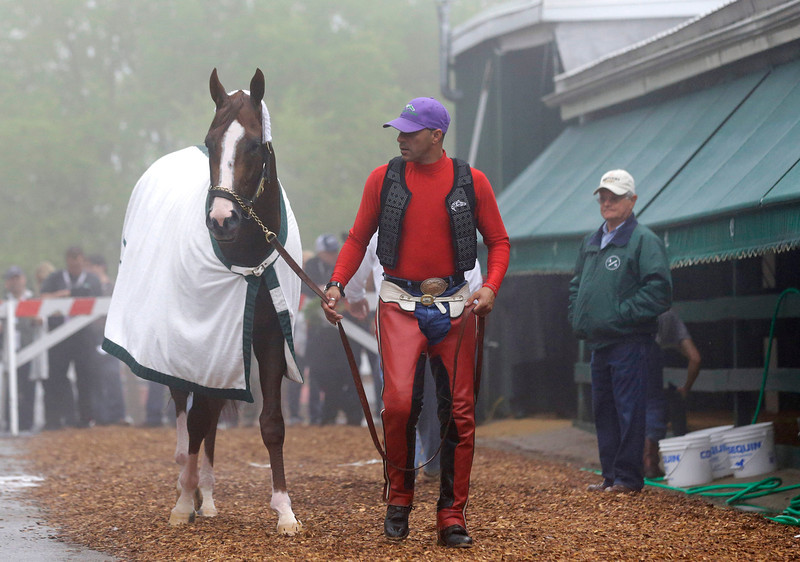 . Exercise rider Willie Delgado, center, leads Kentucky Derby winner California Chrome to his stable as trainer Art Sherman, right, watches after a workout at Pimlico Race Course in Baltimore, Thursday, May 15, 2014. The Preakness Stakes horse race is scheduled to take place May 17. (AP Photo/Patrick Semansky)