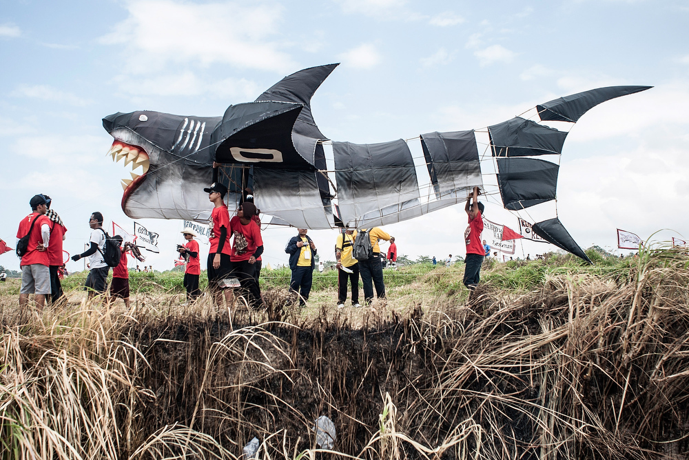 . Participants prepare to fly a shark shaped kite during the Bali Kite Festival on July 26, 2013 in Denpasar, Bali, Indonesia. The event is a seasonal religious festival, which is intended to send a message to Hindu Gods to create abundant harvests and crops. Aproximately 1121 traditional kites are flown during the three day annual Festival.  (Photo by Putu Sayoga/Getty Images)