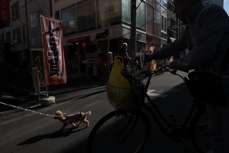 2019-12-21 Japan-447.jpg
