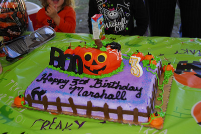 Marshall's Third Birthday Party 10-24-2010