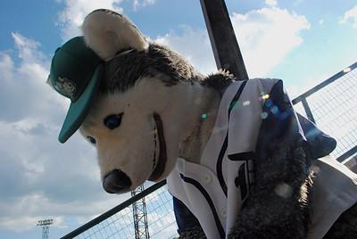 2010 07 18:  Duluth Huskies v Brainerd Lunkers, Duluth
