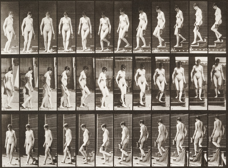 Nude woman descending stairs (Animal Locomotion, 1887, plate 138)