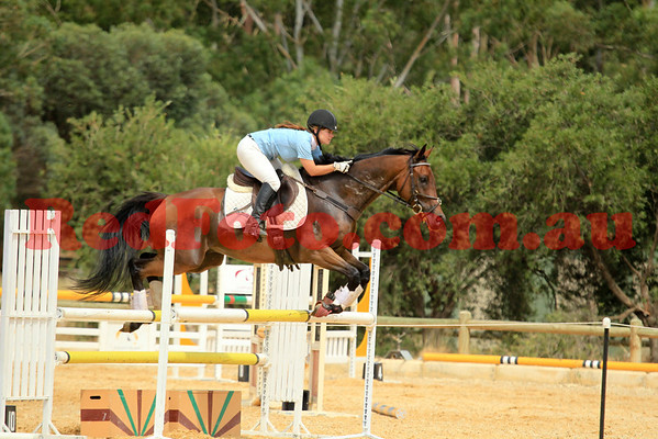 Acres ShowJumping