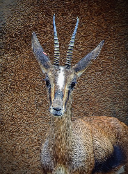 T_Deer of some kind with gazelle horns.jpg