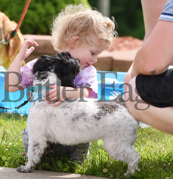 Harold Aughton/Butler Eagle: Harold Aughton/Butler Eagle: Ayla Jenkins, 2, of Butler receives a little kiss from a Shichon named, Mya at the 2nd Annual Memorial Mutt Strut in memory of Garrett Field. Garrett was known for his love and commitment to animals of all species and was often referred to as the animal whisperer!