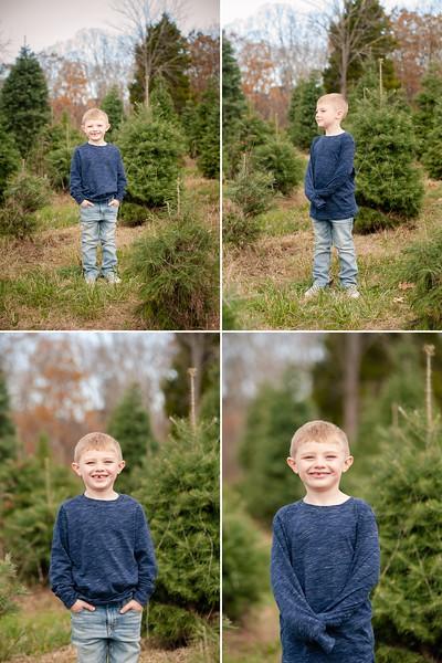 Baumgardner Family Photos | Clouse's Pine Hill Tree Farm
