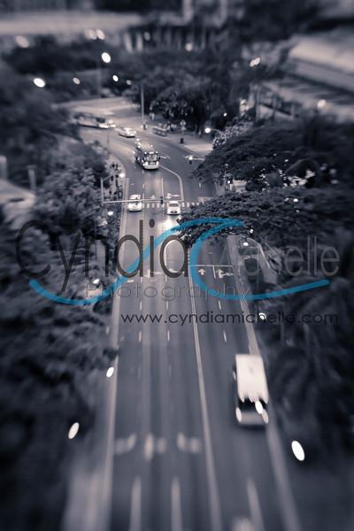 Waikiki Black & White