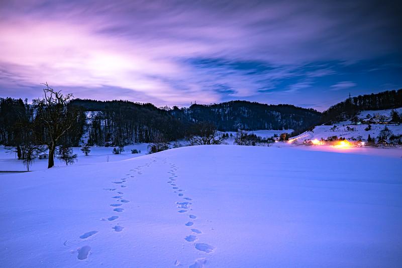 Winterthur-Winter-04687.jpg
