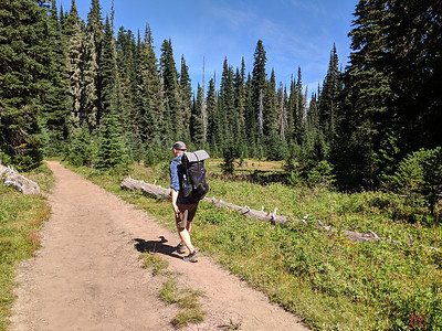 2019-08 Chinook Pass to White Pass on the PCT