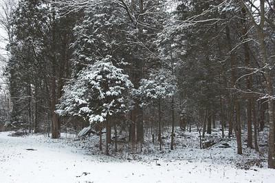 First Snow - 2007