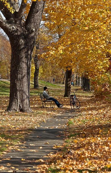 fall09.jpg