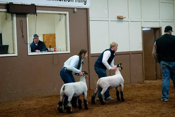 EOSC Sheep Jackpot