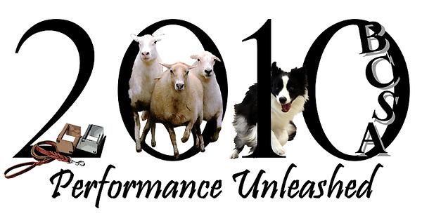 Herding Instinct: Julie-Noble; Liz-Moiya; Lucinda-Taser