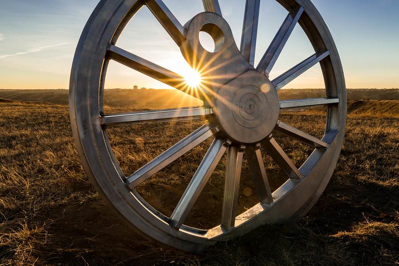 barley 20.jpg